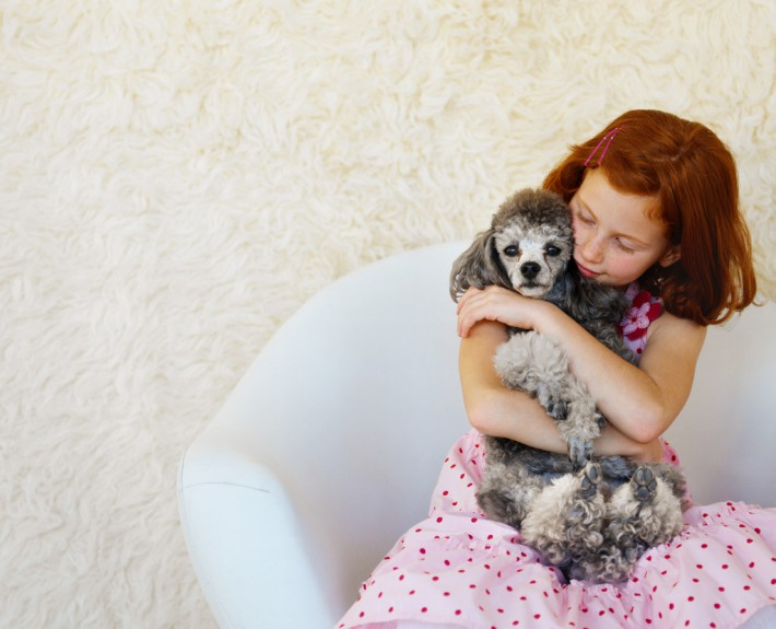 Girl (10-11) Sitting in a Chair and Holding a Poodle